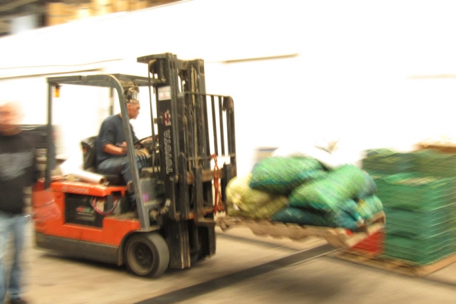 Seagate factory fills with sacks of olives