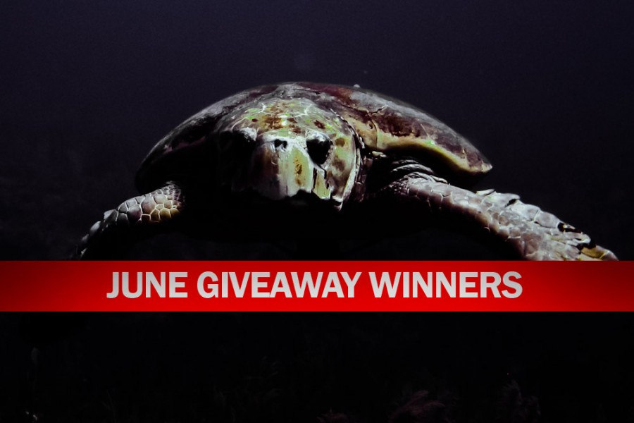 June Giveaway Winners Announced