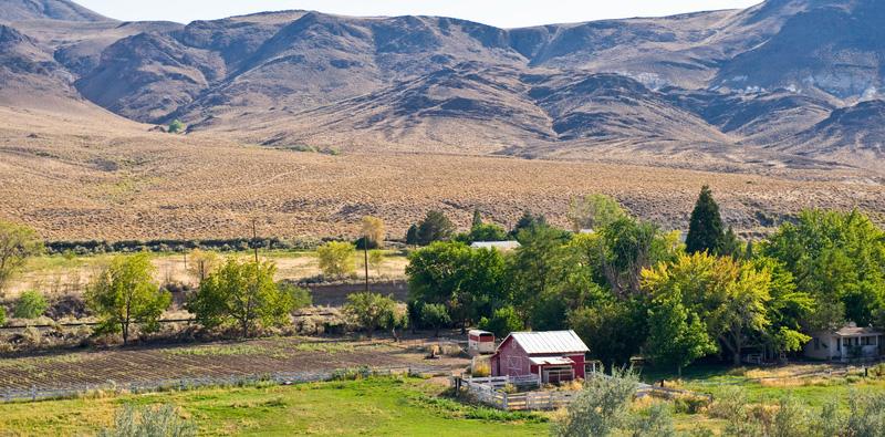 Fridays' Farm Fact – Crop Rotation is Essential to Organic Farming