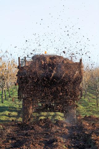 Mulch: The Organic Farmer's Best Friend