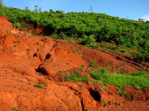Keeping Soil Where it Belongs on Organic Farms