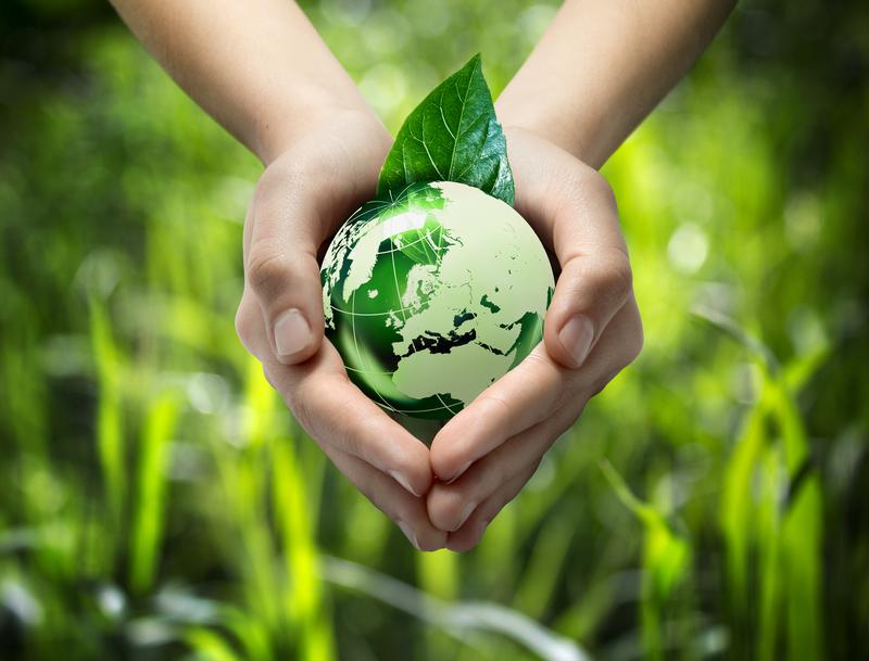 Organic Farming Around the World