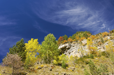 5 Tips for fun and safe fall hiking