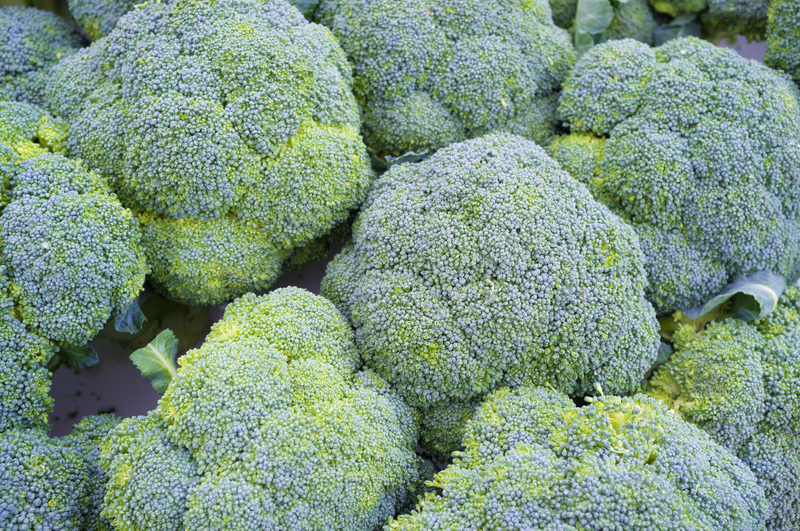 How to Give Broccoli Another Chance