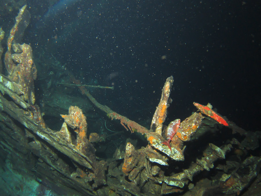 Night wreck-diving off Bonaire