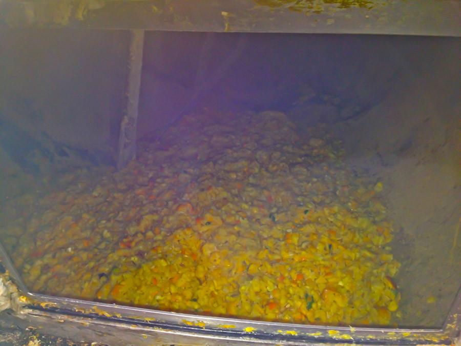Ground lemons in freeze-dryer