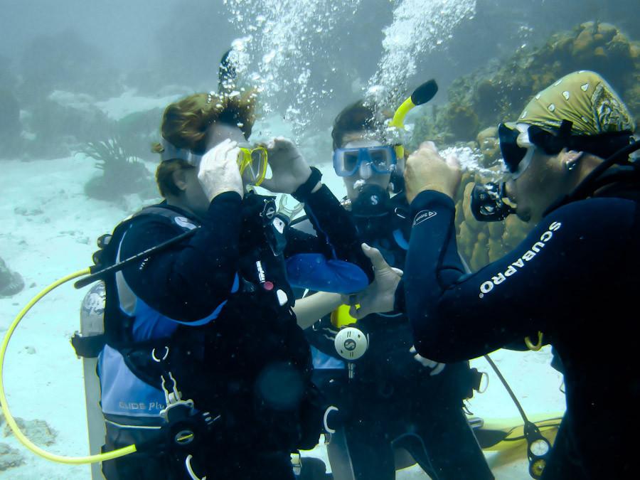 Dive class