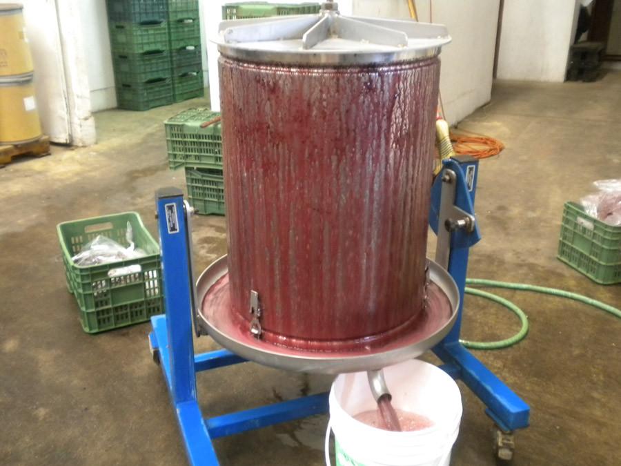 Seagate grape press