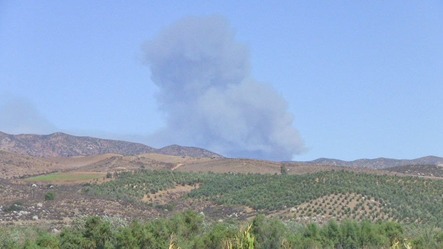 Seagate farming, summer range fires