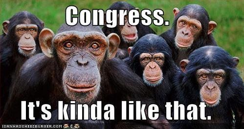 Congress Photo credit - Kevin S via Flickr