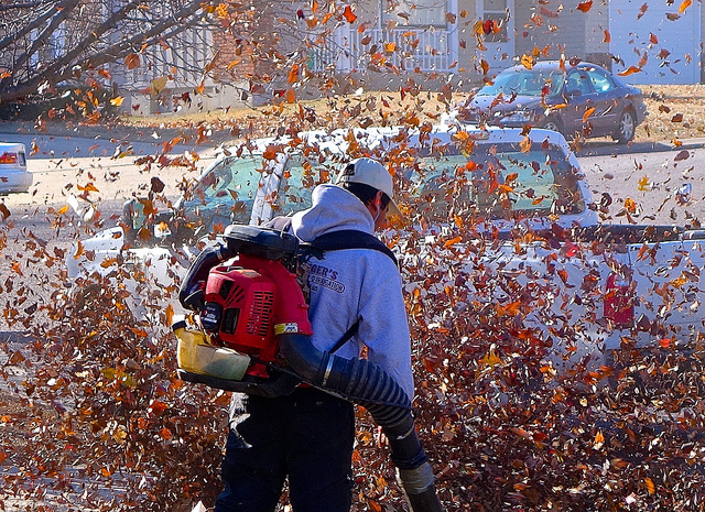 Natural Lawncare Tips to Prepare Your Yard for Fall