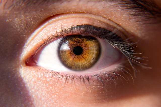 Natural Ways to Prevent Eye Strain During Screen Time