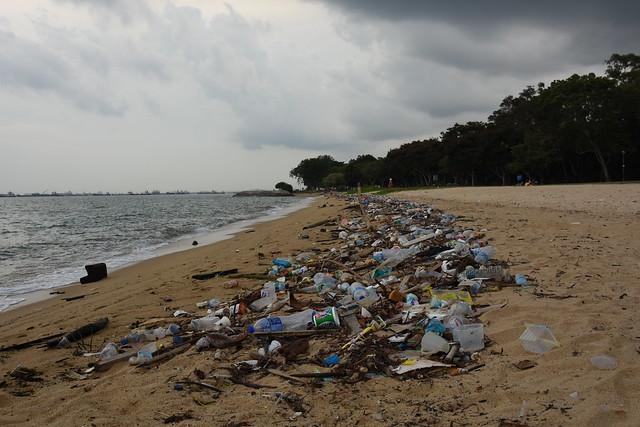 Ocean plastic litter