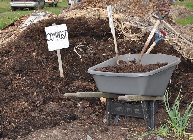 Basics of Composting and Easy Tips for Composting at Home